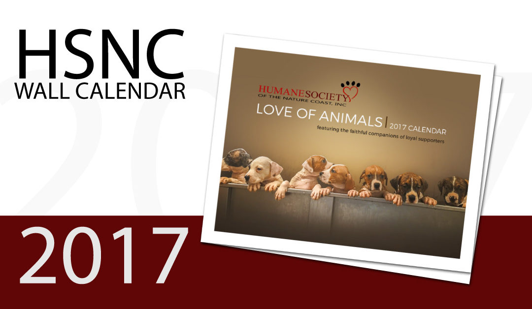 2017 Wall Calendar Love of Animals