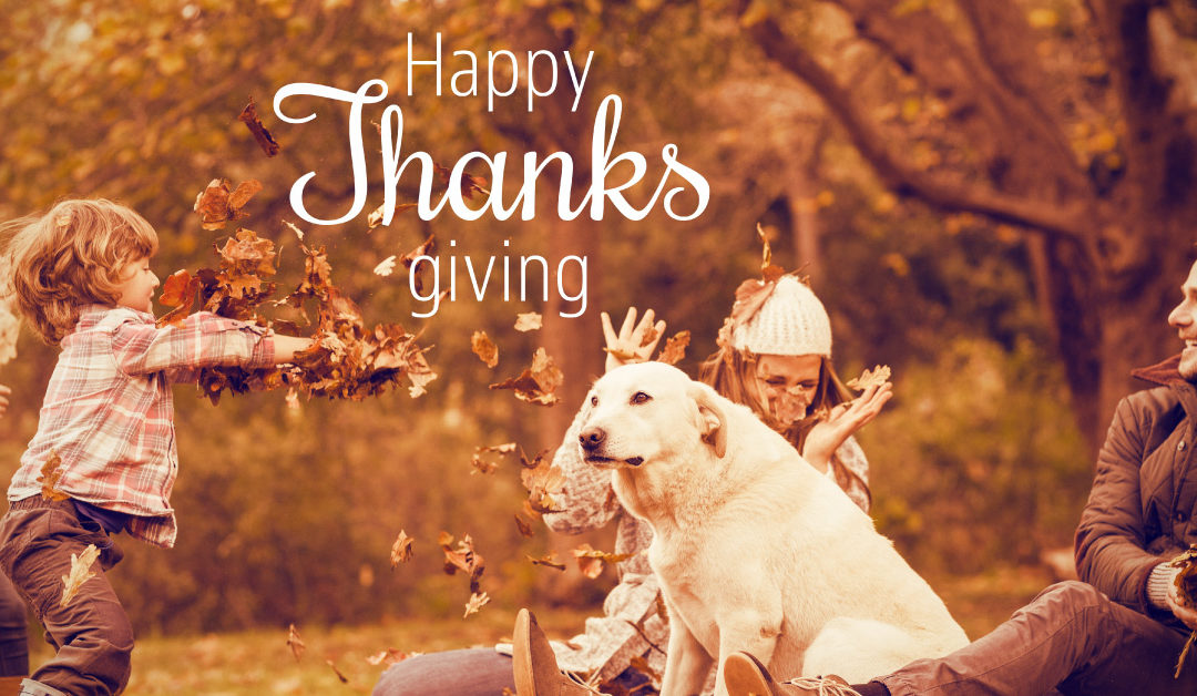 Thanksgiving Day Tips for Pet Owners