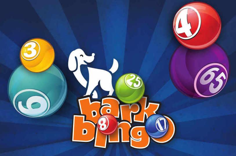 Bark Bingo Flyer