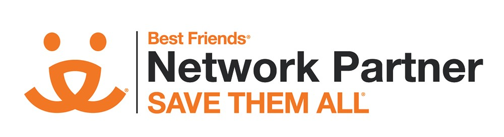 Network Partners Save Them All